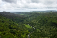 Canyon Streams